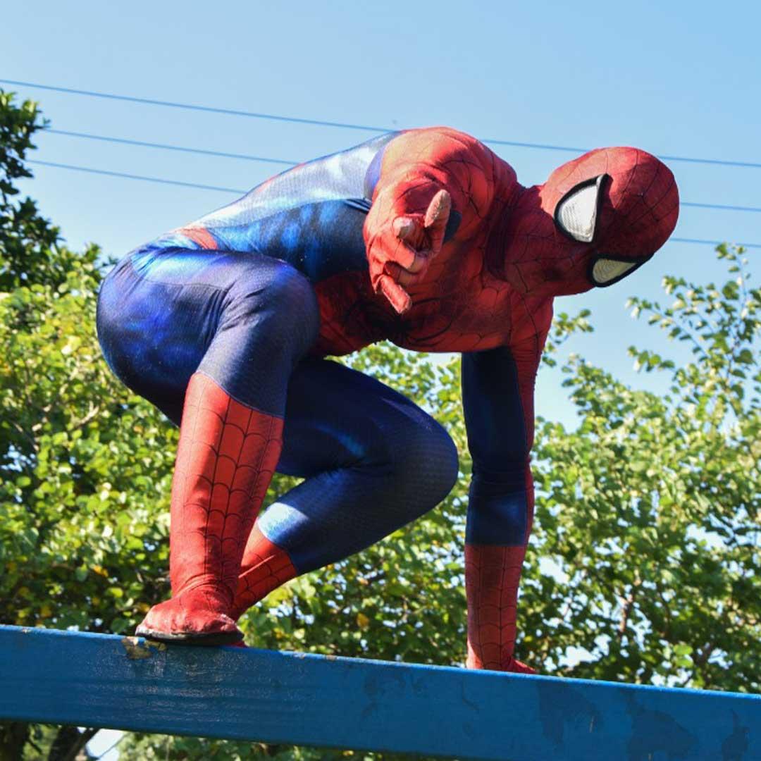 tema-homem-aranha-foto-001