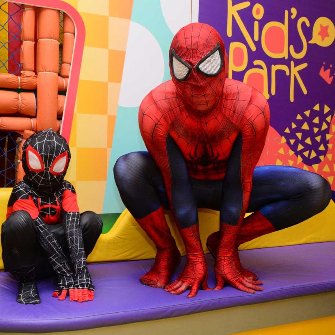 tema-homem-aranha-foto-004